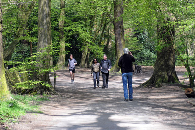highgate woods 5 Hidden Gems to See in London